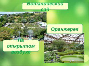 Ботанический сад На открытом воздухе Оранжерея