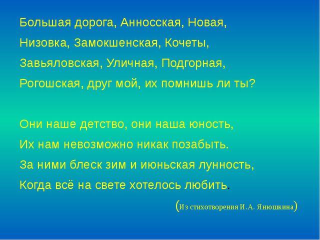 Большая дорога, Анносская, Новая, Низовка, Замокшенская, Кочеты, Завьяловская...