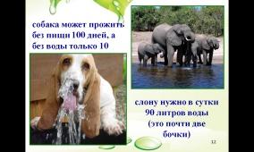 hello_html_50e10834.jpg