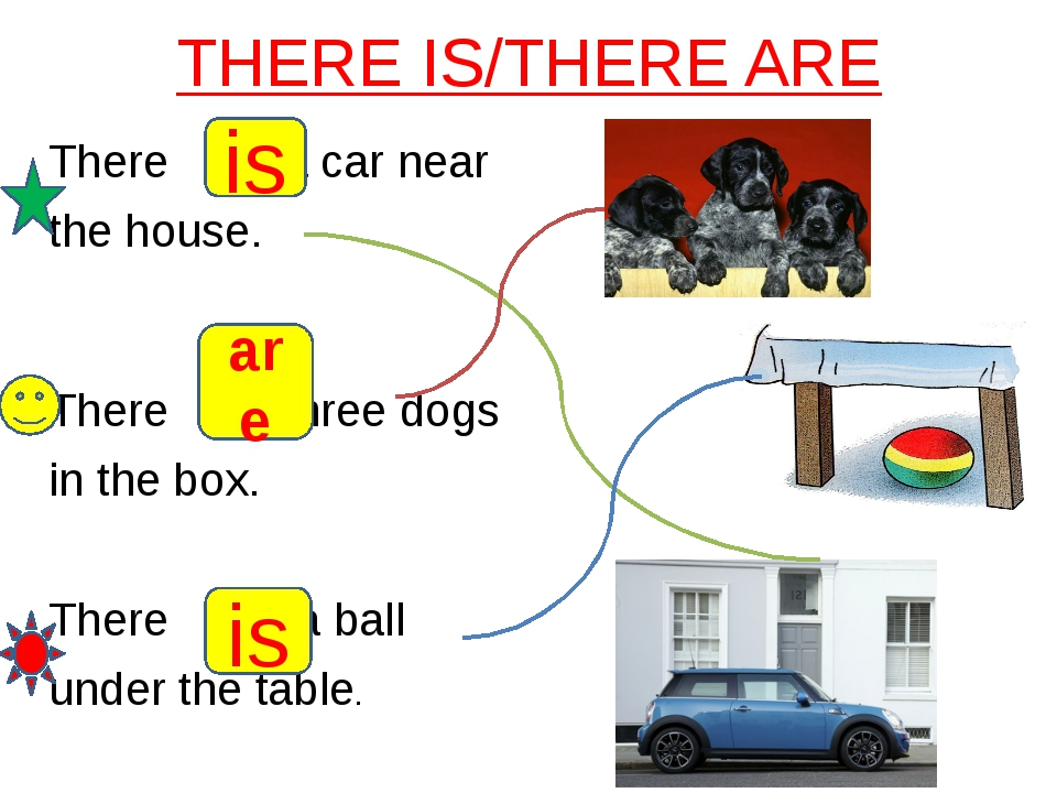 THERE IS/THERE ARE There a car near the house. There three dogs in the box. T...