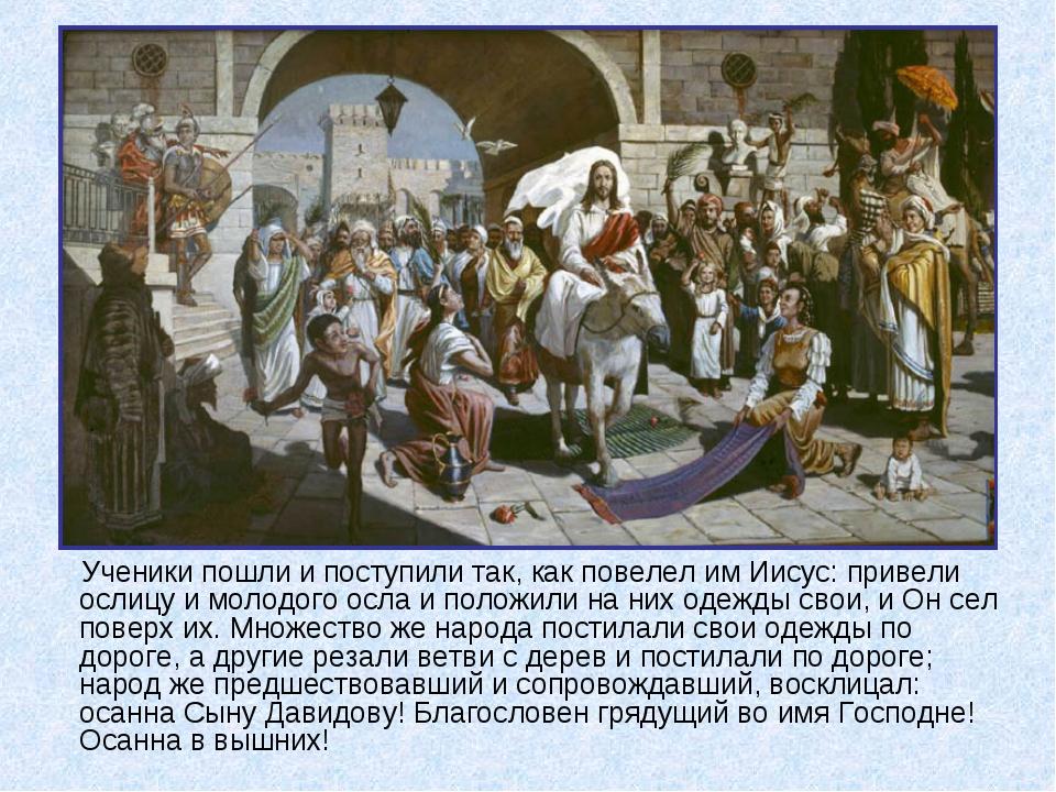 Ученики пошли и поступили так, как повелел им Иисус: привели ослицу и молодог...