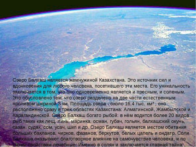 Озеро Балхаш является жемчужиной Казахстана. Это источник сил и вдохновения...
