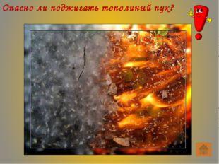 Как тушить загоревшуюся на человеке одежду? Следует повалить человека на зем
