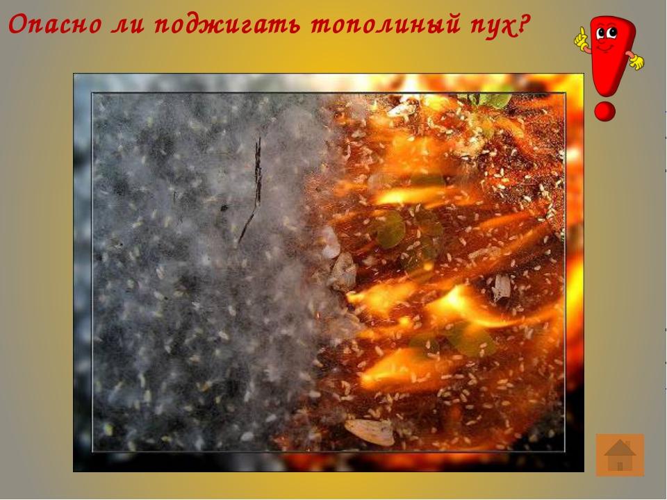 Как тушить загоревшуюся на человеке одежду? Следует повалить человека на зем...