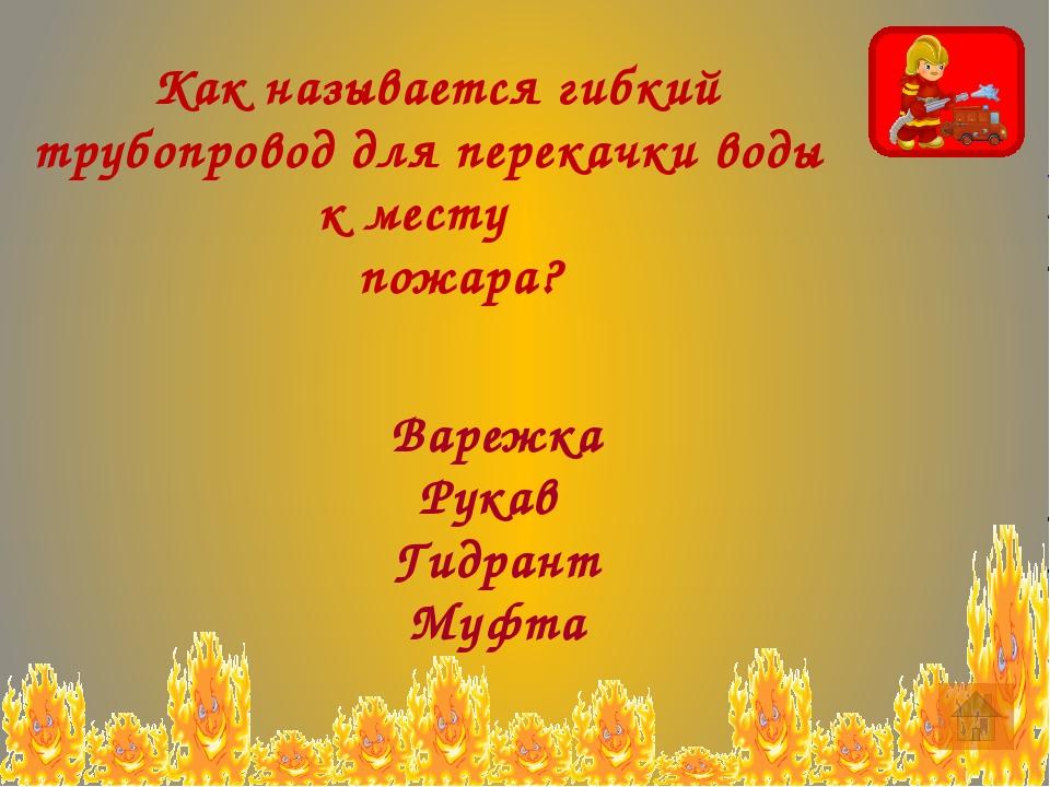 Презентации с сайта http://nsportal.ru: Постольникова Н. В. «Правила личной б...