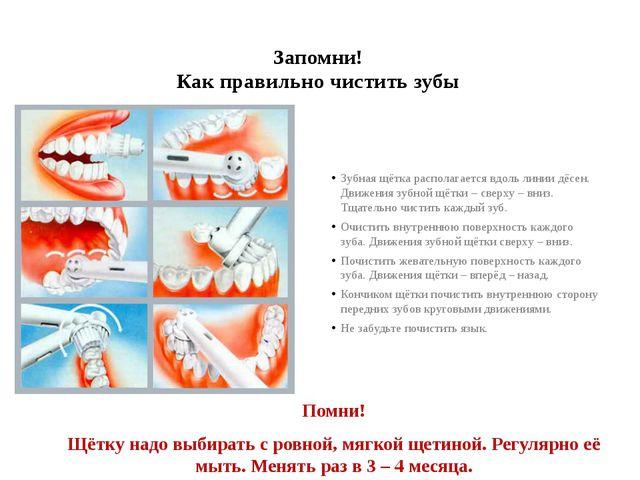 Запомни! Как правильно чистить зубы Помни! Щётку надо выбирать с ровной, мягк...