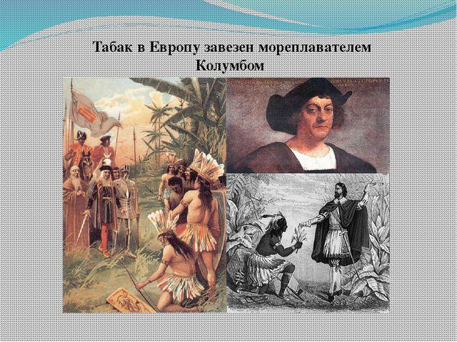 Табак в Европу завезен мореплавателем Колумбом