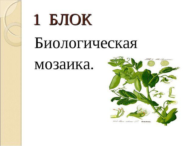 1 БЛОК Биологическая мозаика.