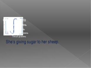 She's giving sugar to her sheep.