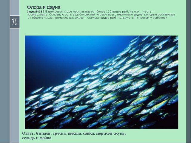 Флора и фауна Задача №12 В Баренцевом море насчитывается более 110 видов рыб,...