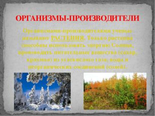 ОРГАНИЗМЫ-ПРОИЗВОДИТЕЛИ Организмами-производителями ученые называют РАСТЕНИЯ.