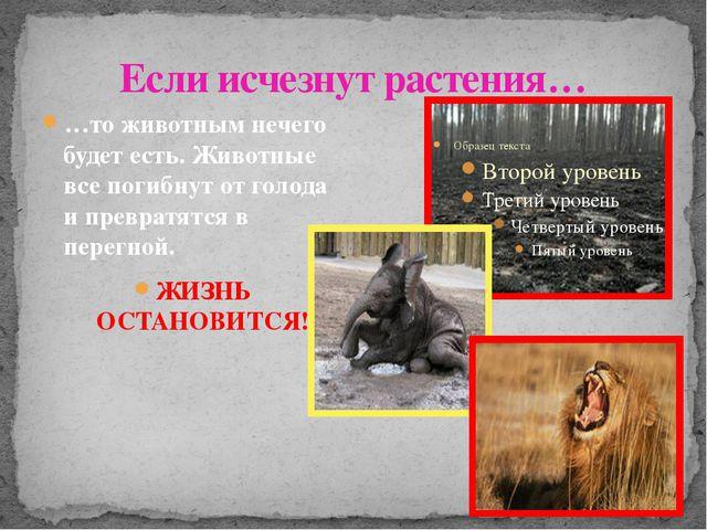 Если исчезнут растения… …то животным нечего будет есть. Животные все погибнут...