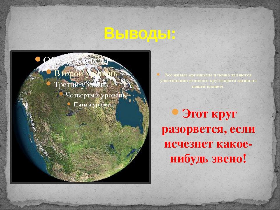 Выводы: Все живые организмы и почва являются участниками великого круговорота...
