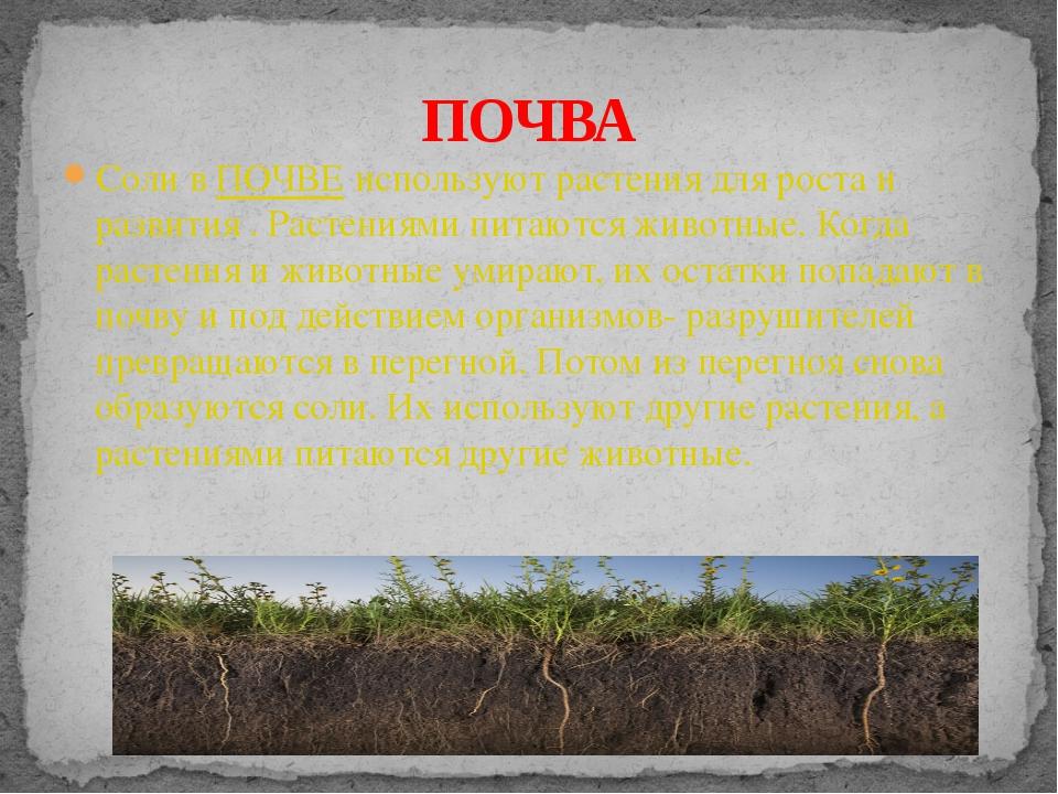 Соли в ПОЧВЕ используют растения для роста и развития . Растениями питаются ж...