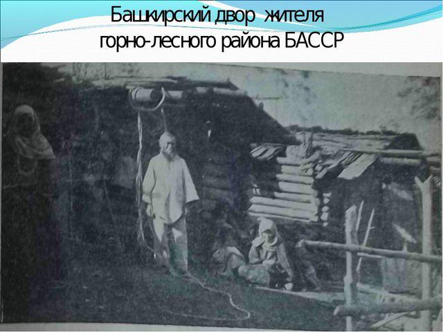 Башкирский двор жителя горно-лесного района БАССР