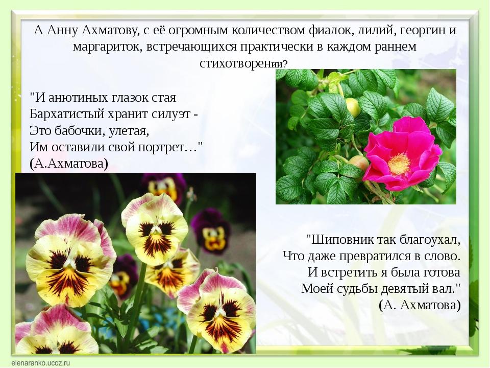 А Анну Ахматову, с её огромным количеством фиалок, лилий, георгин и маргарито...