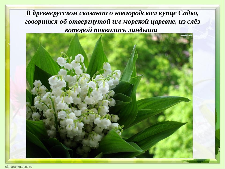 В древнерусском сказании о новгородском купце Садко, говорится об отвергнутой...