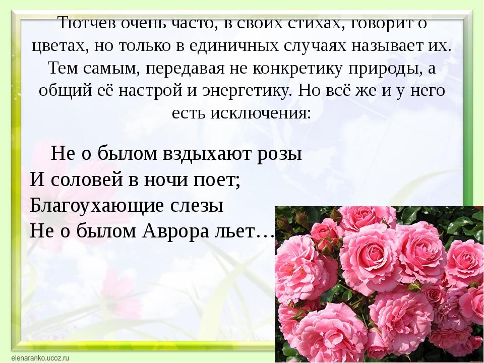 Тютчев очень часто, в своих стихах, говорит о цветах, но только в единичных с...