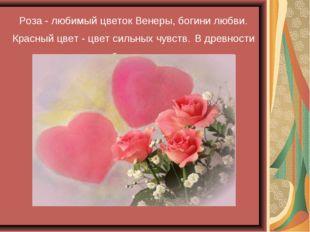 Роза - любимый цветок Венеры, богини любви. Красный цвет - цвет сильных чувст