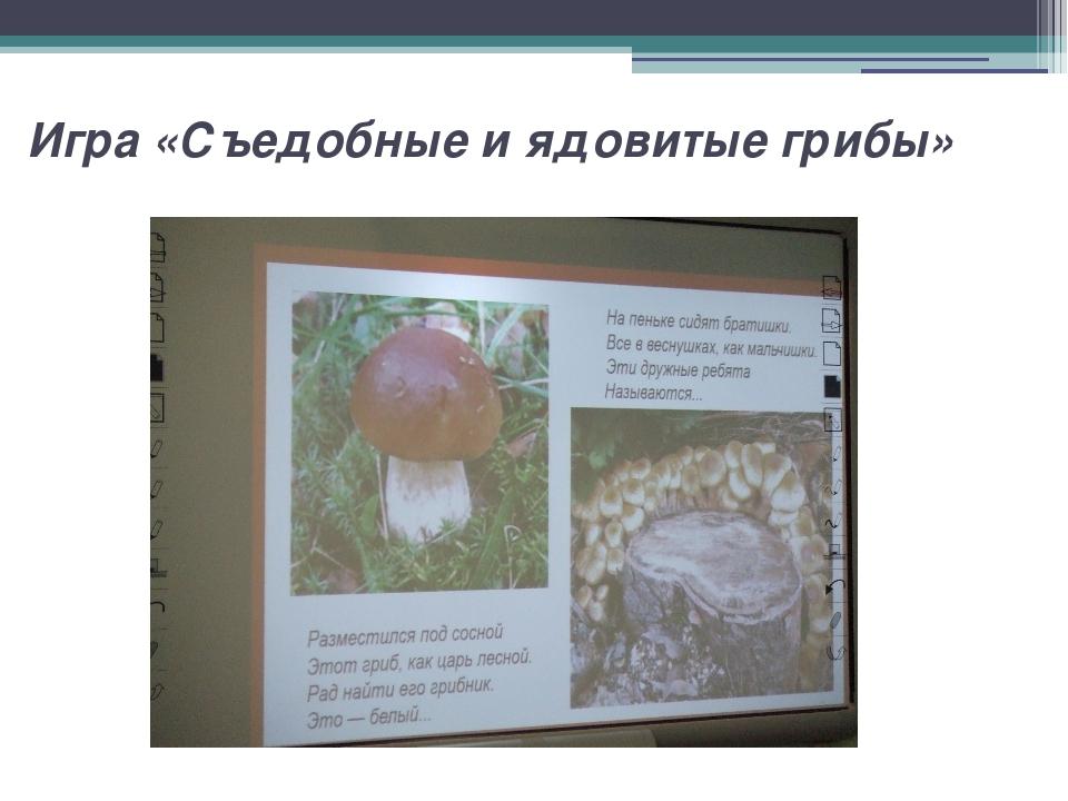 Игра «Съедобные и ядовитые грибы»