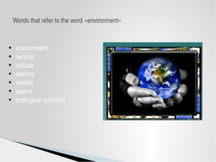 environment recycle reduce destroy wildlife spend ecological pollution Words