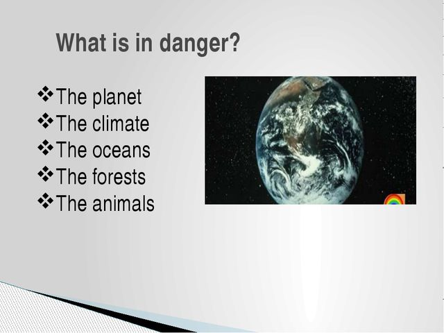 What is in danger? The planet The climate The oceans The forests The animals