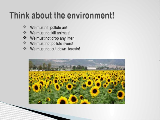 Think about the environment!  We mustn't pollute air!  We must not kill ani...