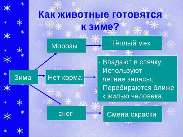 Как животные готовятся к зиме? Тёплый мех - Впадают в спячку; - Используют ле...