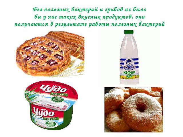 Без полезных бактерий и грибов не было бы у нас таких вкусных продуктов, они...