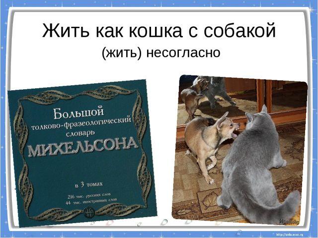 Жить как кошка с собакой (жить) несогласно