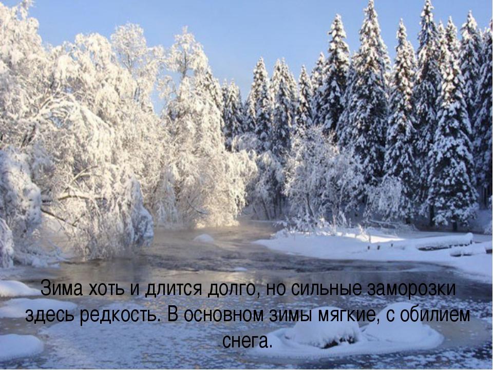 Зима хоть и длится долго, но сильные заморозки здесь редкость. В основном зим...
