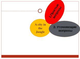A city in the Jungle 2. Уточняющие вопросы 1.Простые вопросы
