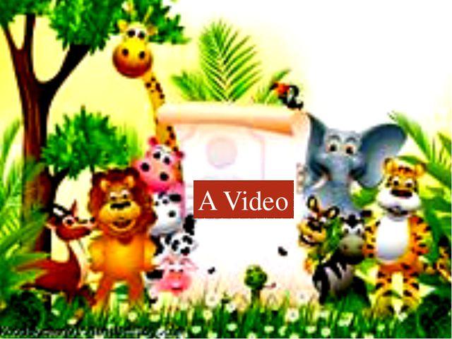 A Video A Video