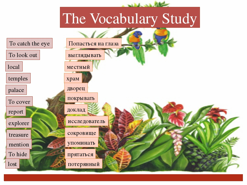 The Vocabulary Study To catch the eye To look out local temples palace To cov...