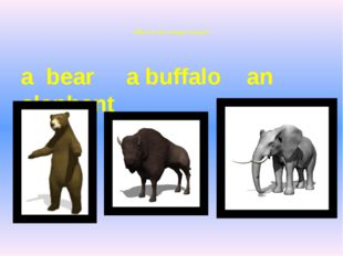 Which is the strongest animal? a bear a buffalo an elephant