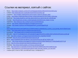Ссылки на материал, взятый с сайтов: Мышь - http://static2.keep4u.ru/2013/07/