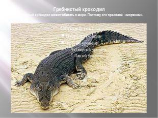 Гребнистый крокодил Гребнистый крокодил может обитать в море. Поэтому его про