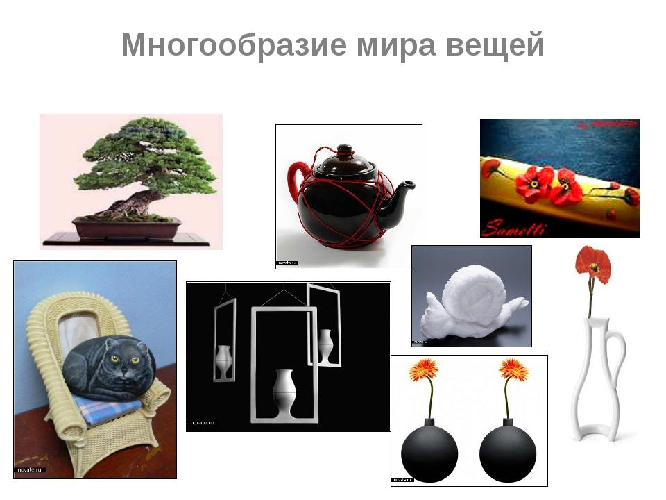 Многообразие мира вещей