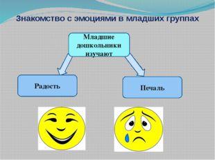 Знакомство с эмоциями в младших группах Радость Младшие дошкольники изучают П