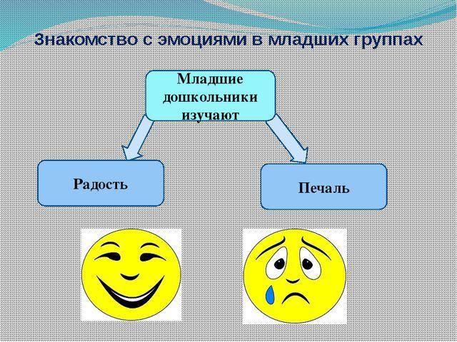 Знакомство с эмоциями в младших группах Радость Младшие дошкольники изучают П...