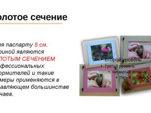 Золотое сечение Поля паспарту 5 см. шириной являются ЗОЛОТЫМ СЕЧЕНИЕМ професс