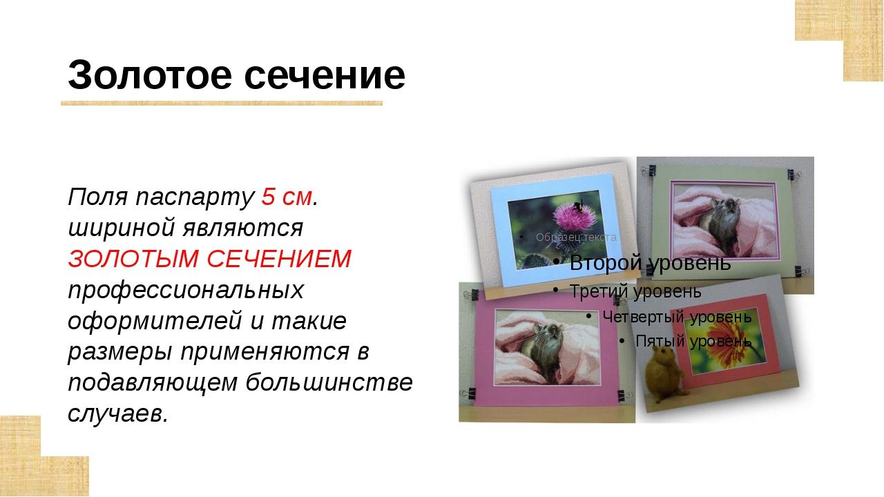Золотое сечение Поля паспарту 5 см. шириной являются ЗОЛОТЫМ СЕЧЕНИЕМ професс...