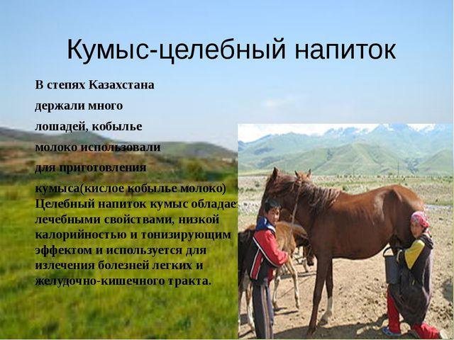 Кумыс-целебный напиток В степях Казахстана держали много лошадей, кобылье мол...
