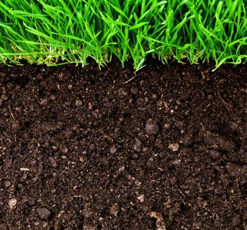 http://learningwhiledoing.in/UploadedFiles/Lesson/Agriculture_Soil_Soil_Image.jpg