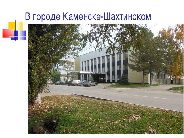 В городе Каменске-Шахтинском