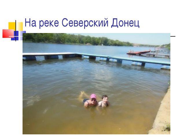 На реке Северский Донец