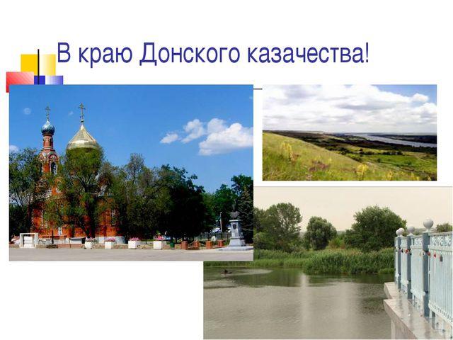 В краю Донского казачества!