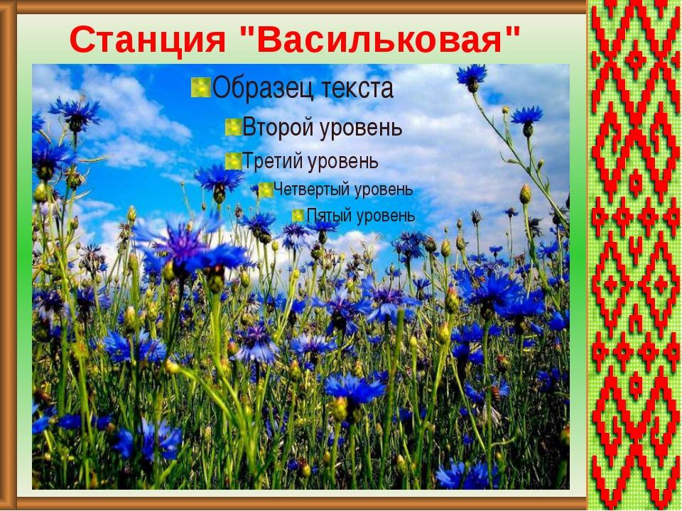 """Станция """"Васильковая"""""""
