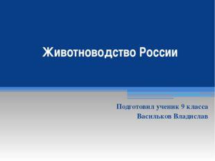 Животноводство России Подготовил ученик 9 класса Васильков Владислав