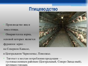 Птицеводство Производство яиц и мяса птицы. Опираются на корма, основой котор